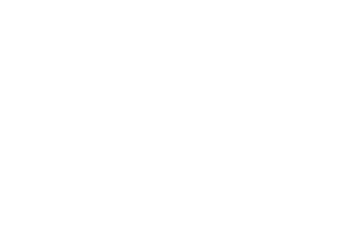 NCS Hair