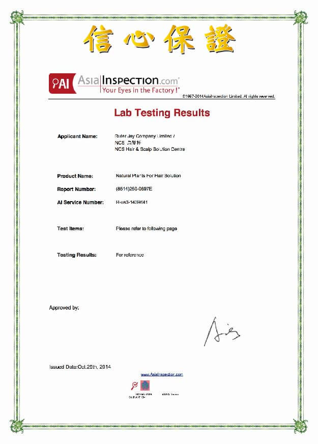Lab Test Report 1 - Our Recipe